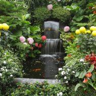 Kwiaty w ogrodzie i wodospad