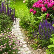 Ścieżka kamienna w ogrodzie