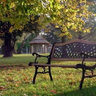 jesień w ogrodzie