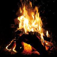 ognisko w ogrodzie fot. www.sxc.hu