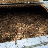 kompost www.morguefile.com