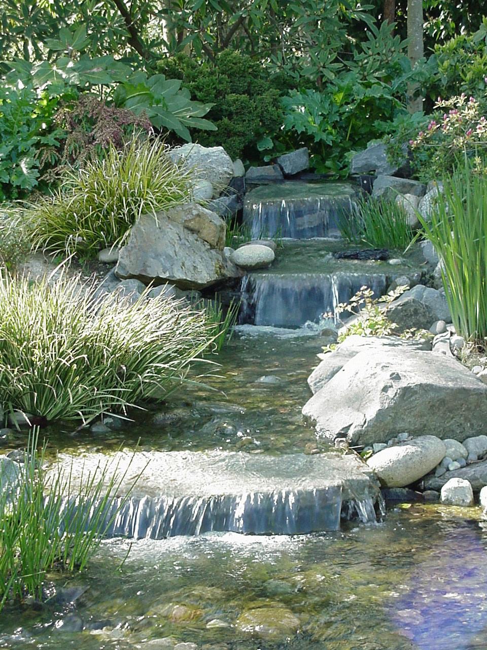 Kaskada i strumie w oczku wodnym for Organizzare il giardino di casa