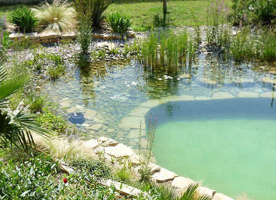 Ekobasen Environmentally sustainable swimming pools